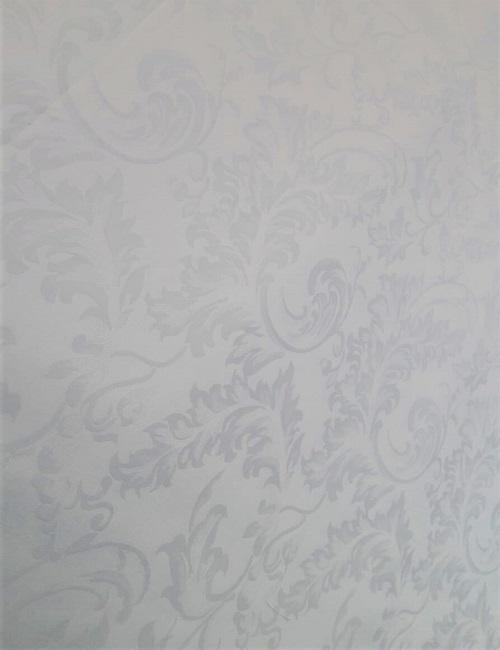 Fiandra bianca